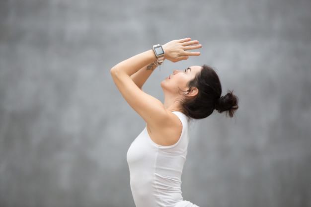 Surya Namaskar Yoga